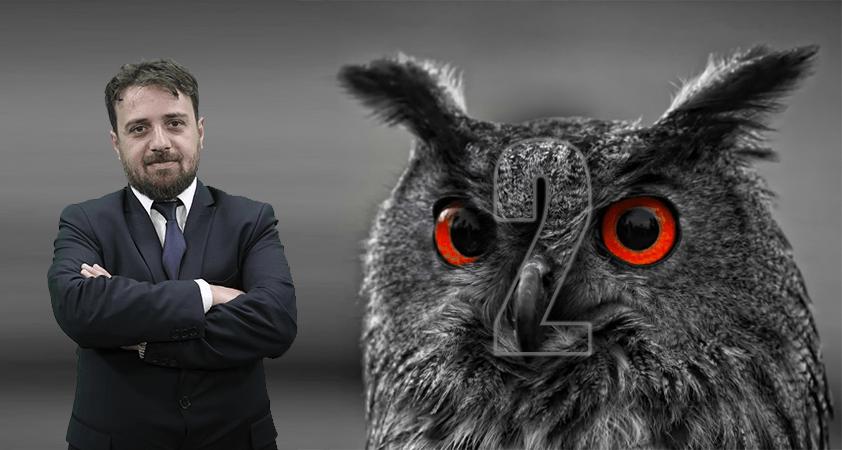 Aynı baykuşlar II