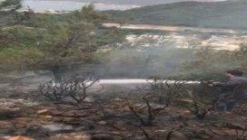 Marmaris'te makilik alanda yangın çıktı