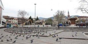Yıkımı insanlar yerine güvercinler izledi