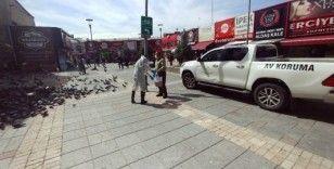 Doğa Koruma ve Milli Parklar Şube Müdürlüğü'nden güvercinlere yem desteği