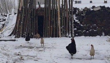 Van'da Nisan ayında kar sürprizi