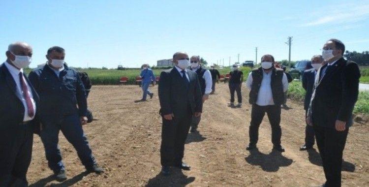 Bafra Ovası'nda damlama sulama çeltik ekimi