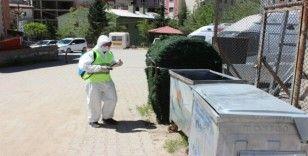 Uludere Belediyesi ilaçlama çalışmalarına başladı