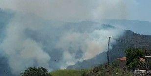 Ormanlık alandaki yangın paniğe neden oldu
