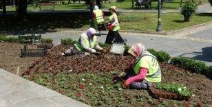 Anıt Park'taki çiçekler yenilendi