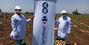 """CarrefourSA, sürdürülebilir yerli tarıma destek adına """"ne lazımsa"""" yapıyor"""