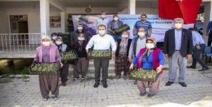Başkan Seçer, Silifke'de üreticilere lavanta fidesi dağıttı