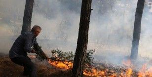 Salgın da orman yangınlarını engelleyemedi