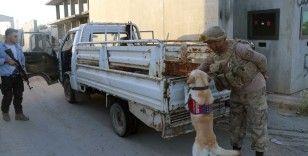 Telabyad ve Resulayn'da drone ve bomba arama köpeği devri