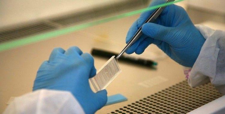 Prof. Dr. Kılıç: 'Mikroçip yöntemiyle erkek kaynaklı tüp bebek başarısızlıkları oranının yüzde 20'lere kadar düşmesi mümkün'