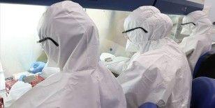 İsveç'te son 24 saatte koronavirüsten 88 kişi öldü
