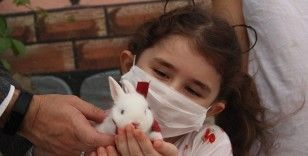 Minik Cemre Cumhurbaşkanından istediği tavşanına kavuştu