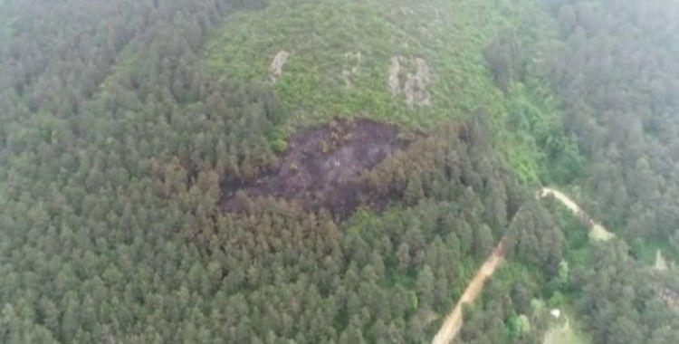Aydos'ta yanan ormanlık alan havadan görüntülendi