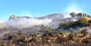 Bodrum'da 3 saat süren yangında 10 hektarlık alan kül oldu