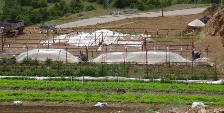 Malatya'da hortum bahçe ve seralara zarar verdi