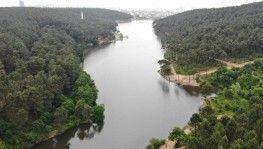 Aydos Ormanı'nın gölüne akan atıklar ve kirli sular canlıları tehdit ediyor