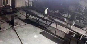 Hırsızlar kısıtlama gününde girdikleri büfede kahve içip 6 bin lira ile kayıplara karıştı