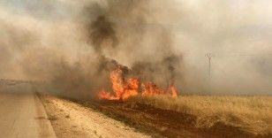 Terör örgütü PKK/YPG'nin Suriye'deki hain planı