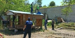Ordu'da sahillerdeki kaçak yapılar kaldırılıyor