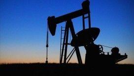 OPEC+ ülkeleri petrol üretim kesintisini 1 ay uzatma kararı aldı