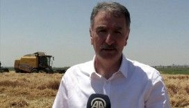 TMO Genel Müdürü Güldal: 'Salgın döneminde gıda arzı ve güvenliği sorunsuzdu'