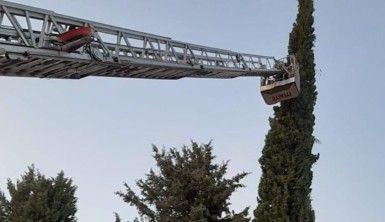 Uçurtmasını almak için çıktığı ağaçta mahsur kaldı