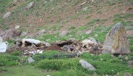 Depremde Mehmetçik yaylaya ulaşıp, yaralıları ambulanslara yetiştirmiş