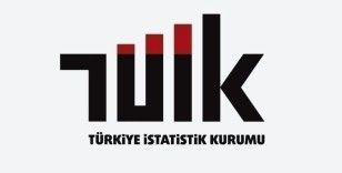 Türkiye'nin tüketim mal ve hizmetleri fiyat düzeyi endeksi 47 oldu