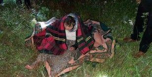 Kaybolan alzheimer hastası ormanlık alandı bulundu