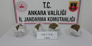 Ankara'da jandarma 44 kilo skunk maddesi ele geçirdi