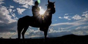 Yahni Dağı'nda doğada otlatılan atlar ilgi çekiyor
