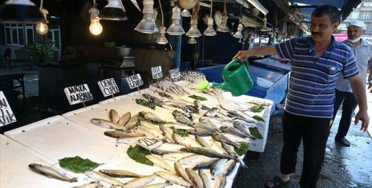 Balıkçıların tezgahları alabalık ve somonla şenlendi