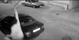 Sancaktepe'de halı hırsızlığı kamerada