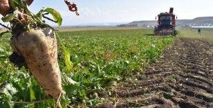 'Sözleşmeli tarım' modeliyle kaliteli ürünün tüketiciye sunulması hedefleniyor