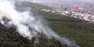 Kayışdağı ormanında çıkan yangın havadan görüntülendi