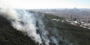 Kayışdağı Ormanı'nda çıkan yangın havadan görüntülendi