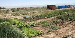 Gıda, tarım ve orman alanında düzenlemelere ilişkin teklif komisyonda kabul edildi