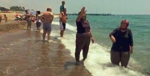 Sahile gelen caretta caretta, tatilcileri önce korkuttu sonra güldürdü