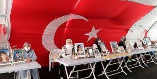 'Diyarbakır aileleri' bir evlada daha kavuşacak olmanın sevincini yaşıyor