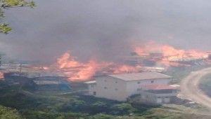Artvin'in Yusufeli ilçesinde yangın