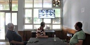 Tarlaları kameralarla donattılar: Kahvede ekran başında çay keyfiyle hırsız nöbeti tutuyorlar