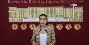 HDP'li Oruç: Libya ve Suriye tezkeresi derhal geçersiz sayılmalıdır