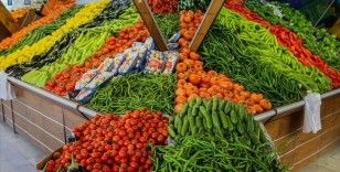 Rusya'ya yaş meyve sebze ihracatı yılın ilk yarısında yüzde 32 arttı