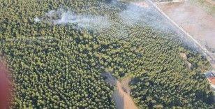 İzmir'de korkutan orman yangını kontrol altında
