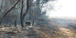Saros'da ormanlık alandaki yangın kontrol altına alındı