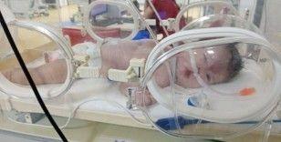 Erkek kimlikli Elif Naz bebek, ölümün kıyısında yardım bekliyor