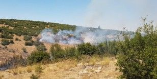 Denizli'de orman yangına havadan ve karadan müdahale ediliyor