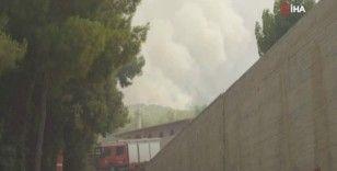 Yunanistan'daki orman yangınları söndürülemiyor