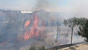 Alkol alırken yaktıkları ateş onlarca ağacı küle döndürdü