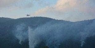 Yenice'deki orman yangını kontrol altına alındı